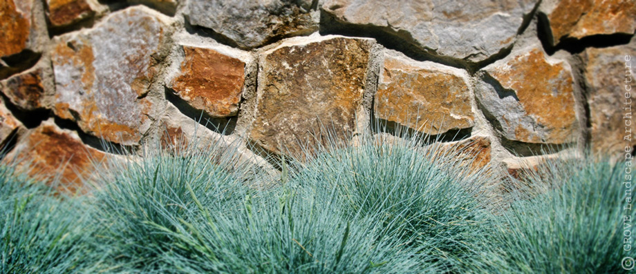016-stone-face-and-festuca.jpg